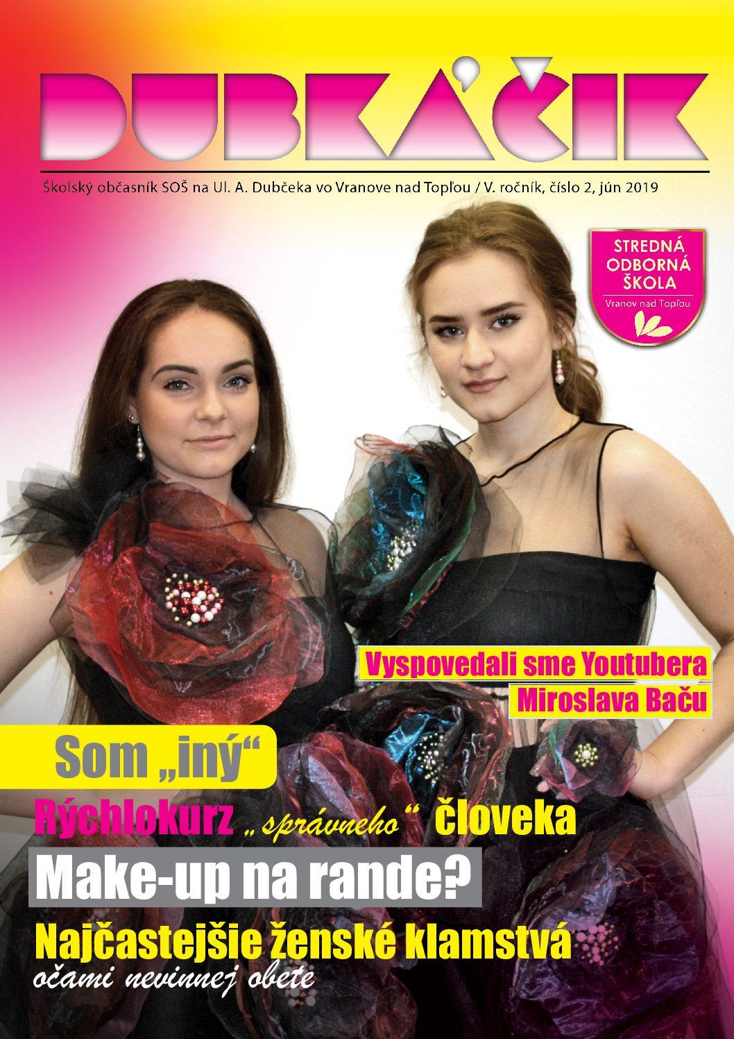 Dubkacik 2019 10 netOKO pdf