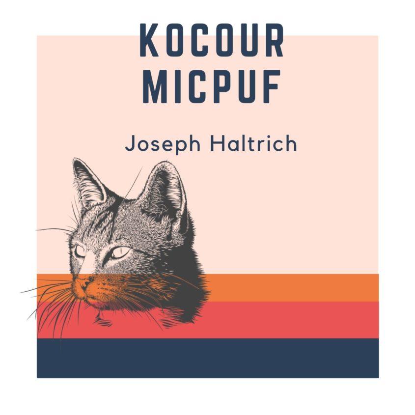Kocour Micpuf