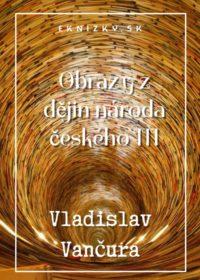 Obrazy z dějin národa českého III