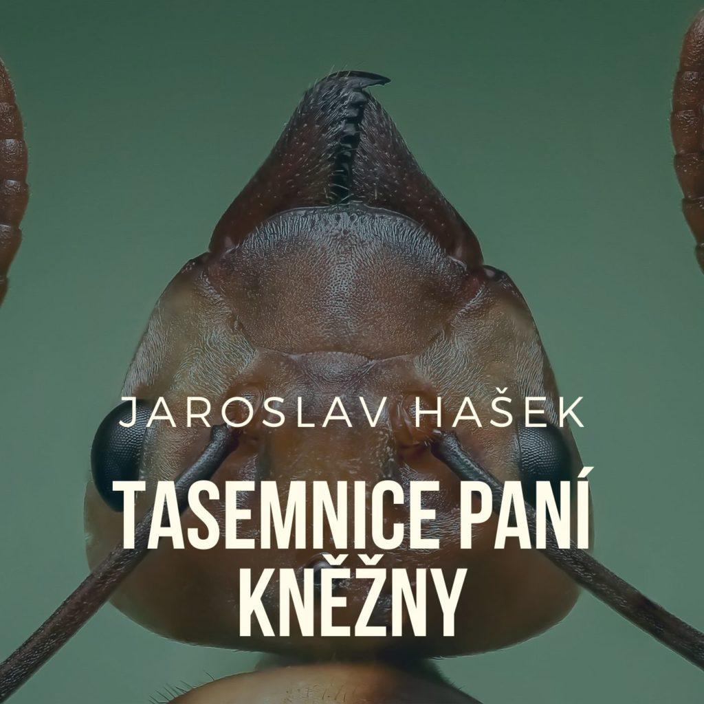 tasemnice-pani-knezny-cte-frantisek-filipovsky