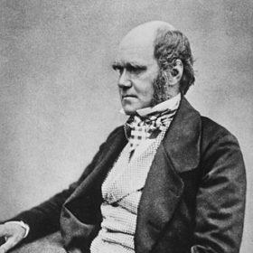 Profilový obrázok používateľa Charles Darwin